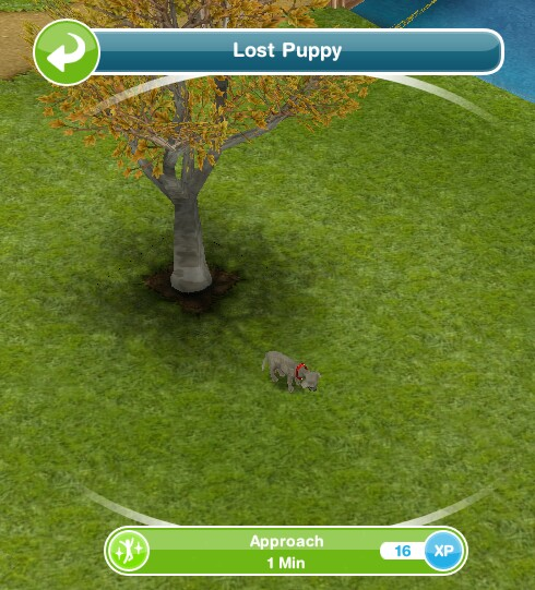 how to get a puppy sims freeplay